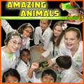 Amazing Animals_Half Day AM TEXT BLACK ACTIVE