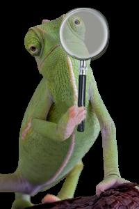 chameleon holding magnifying glass