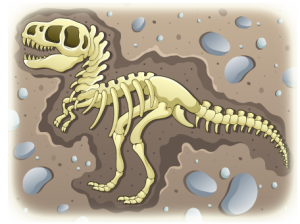 dino fossil in dirt