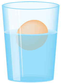 floating-egg