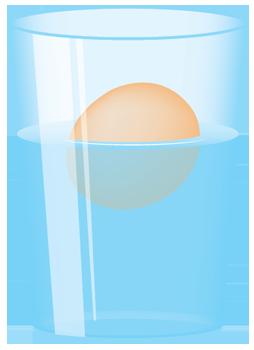 floating-egg