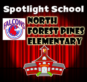 Spotlight-School-n-forest-pines